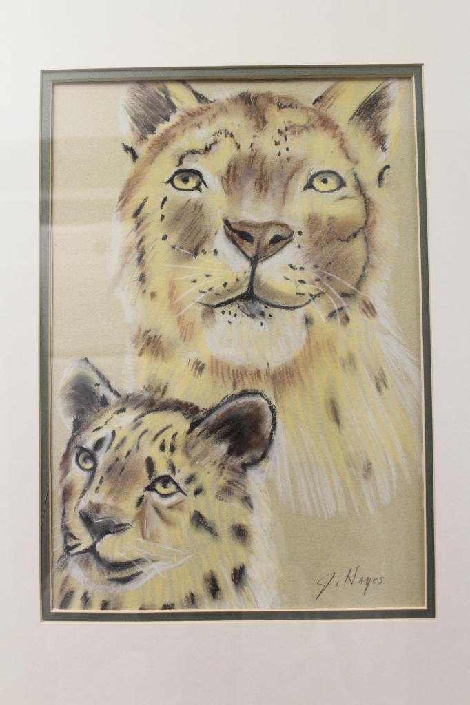 Cub Love by John Hayes
